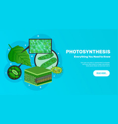 Photosynthesis website banner vector