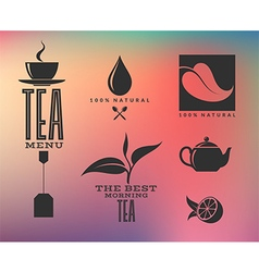 Tea Abstract icons and labels on smooth vector