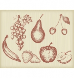 vintage fruits set vector image