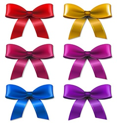 Big Set Bow vector image