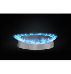 kitchen gas burner vector image vector image