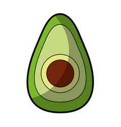 Avocado fresh vegetable icon vector