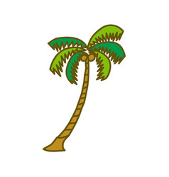 coconut tree design template vector image