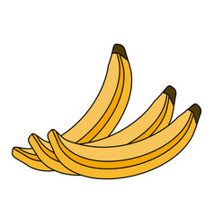 colorful silhouette set bananas fruit vector image