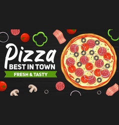 Fast food pizza delivery poster vector