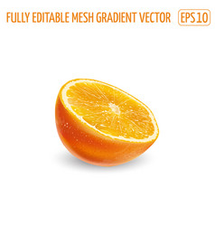 Half an orange on a white background vector