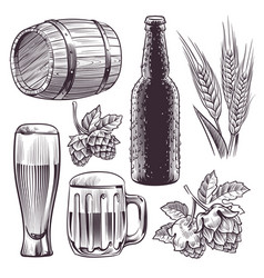 hand drawn beer mug barrel and beer vector image