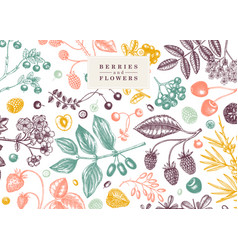 Hand drawn berries background in color wild vector