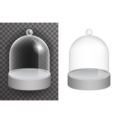 Isolated dome glass showcase box 3d vector