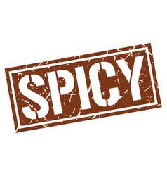 Spicy square grunge stamp vector