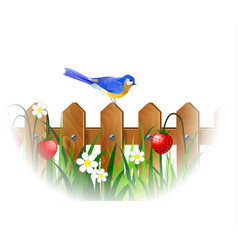 Spring blue bird vector
