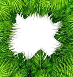Summer Fresh Background with Green Tropical Leaves vector image