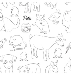 Animals pets pattern vector image vector image