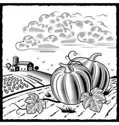 Landscape with pumpkins black and white vector image vector image