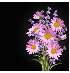 Beautiful daisies and lavender flowers vector