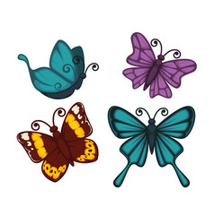 exotic tropical butterflies with unusual elegant vector image