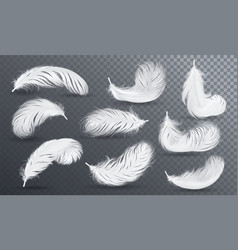 Falling white fluffy twirled feather set vector