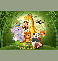 Many animals in bamboo forest vector