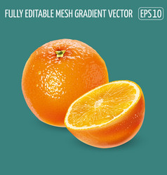Whole orange with a cut half on a green background vector