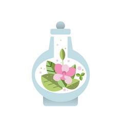 fresh pink flower with green leaves inside glass vector image