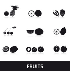 fruits and half fruits eps10 vector image