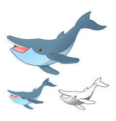 Hump Back Whale vector