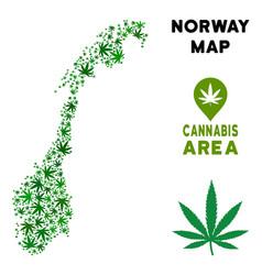 Marijuana collage norway map vector