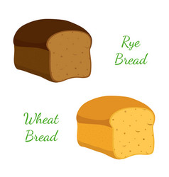 rye wheat bread whole graincartoon style vector image