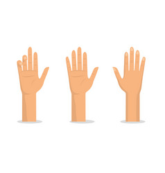 Set hands up with palms and fingers vector