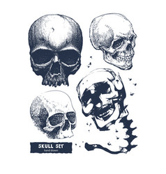 set of skull in hand drawing style vector image