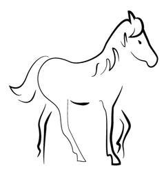 Silhouette horse vector