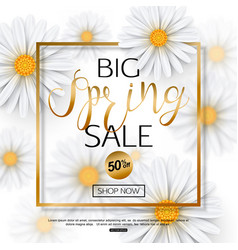 spring sale banner with realistic chamomile flower vector image