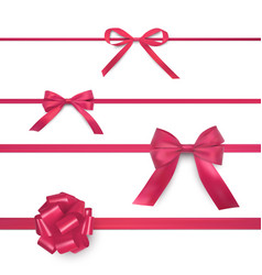 bows on horizontal thin wide ribbons realistic vector image