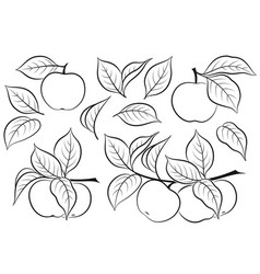 Set of apples pictograms vector