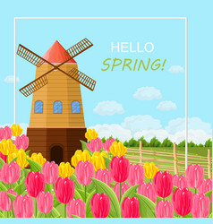 Spring card with tulips and a mill vector