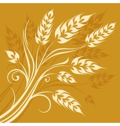 Stylized ears of wheat on vector image