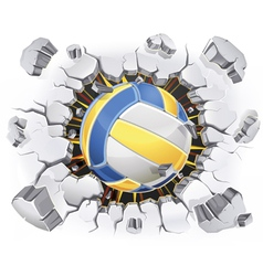 Color Volleyball and Old Plaster wall damage vector image vector image