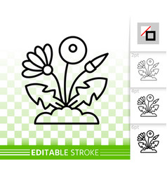 dandelion simple black line icon vector image
