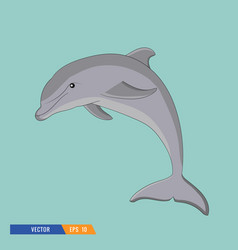 dolphin on blue background vector image