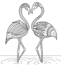 flamingo coloring vector image
