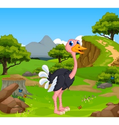 Funny ostrich cartoon with mountain cliff vector