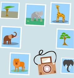 Photos of tropical animals vector