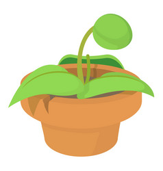 plant in pot icon cartoon style vector image