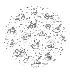 Set natural ingredients and oils vector