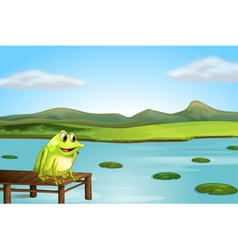 A frog above the wooden bridge vector image