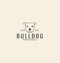 Animal pets dog american pit bull terrier head vector
