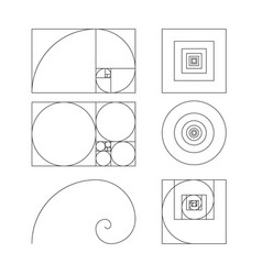 Golden ratio template fibonacci vector