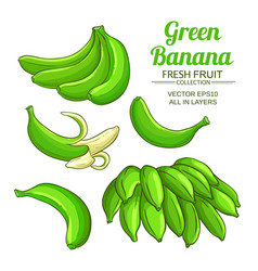 green banana fruit set on white background vector image
