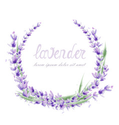 lavender wreath watercolor round frame decor vector image