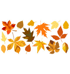 yellow autumn falling leaves vector image